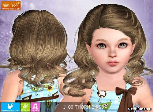 Sims 3 Куда Устанавливать Моды